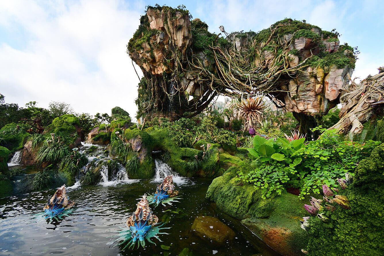 Disney's Animal Kingdom Park Photography Tips from Nikon