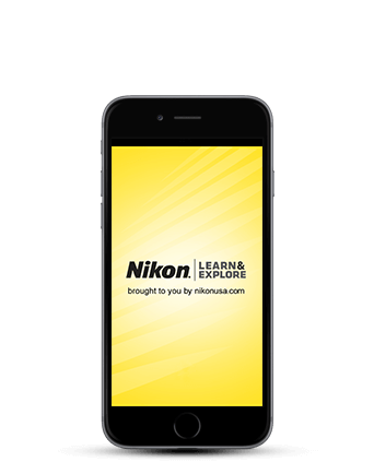 Nikon Learn & Explore - photo tips, techniques and terms ...