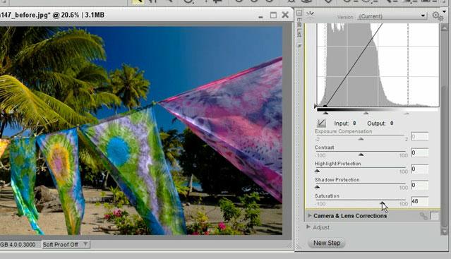 Capture NX 2 Tutorial: Quick Fix from Nikon