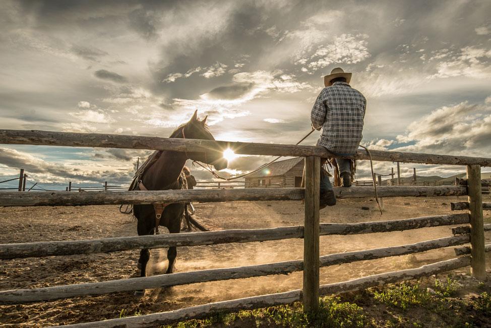 Nikon Ambassador Ami Vitale photo of a cowboy on a fence with a horse dafdb597cebf