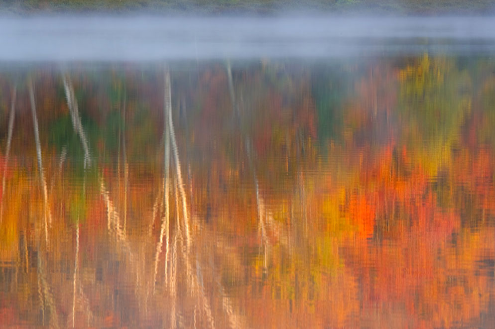 Rod Planck photo the reflection of autumn leaves on trees in a body of water