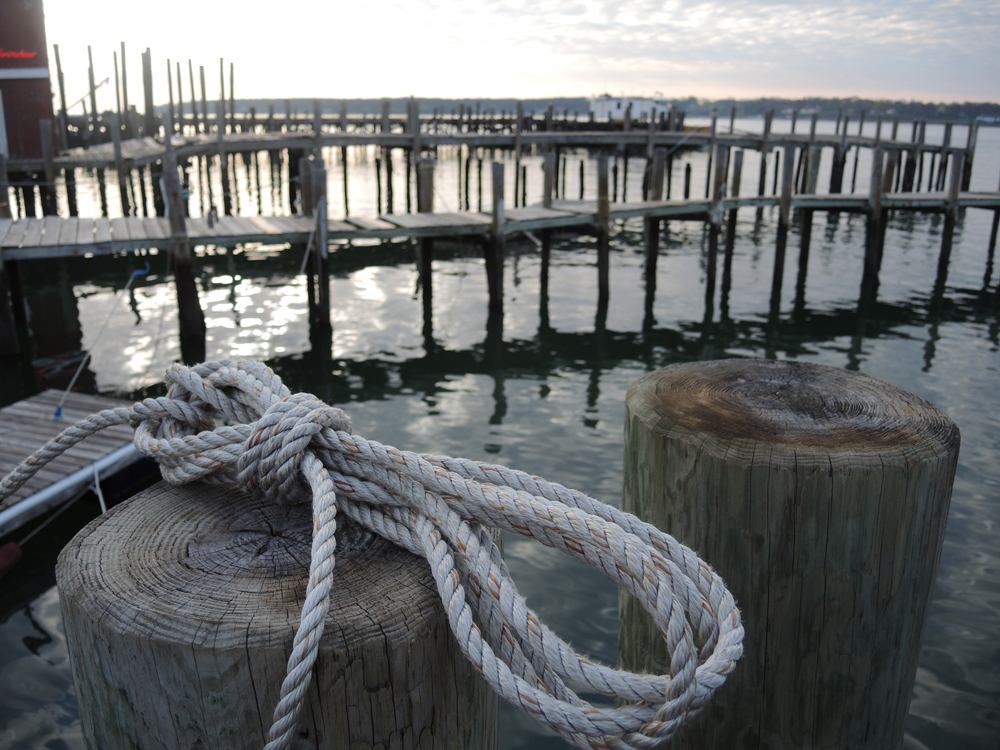 photo of rope on a piling with docks in the background