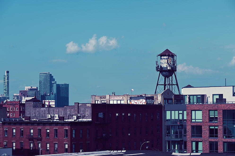 Gabriela Herman photo of a portion of the NY skyline taken with the Z 50, with the denim creative picture control