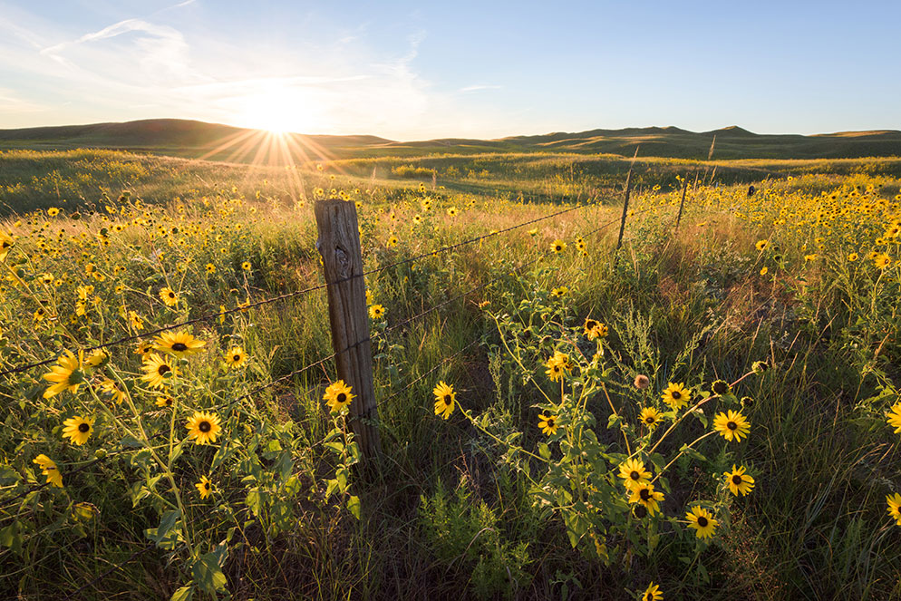 A Photographic Journey of the Great Plains from Nikon