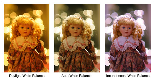Lindsay Silverman trio of photos of a doll with different color flash points.