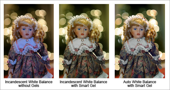 Lindsay Silverman trio of photos of three dolls with different color flash points.