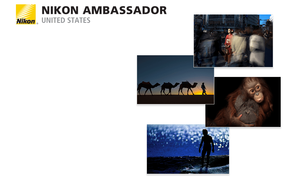 Nikon Ambassador United States logo and one representative image from each of the 19 new Nikon Ambassador contemporary photography artists