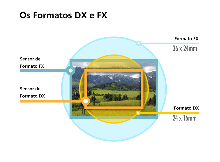 diagrama mostrando os cortes de tamanho do sensor de imagem fx e dx em uma imagem de grama, árvores e montanhas